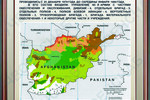 Афганистан – интернациональный долг